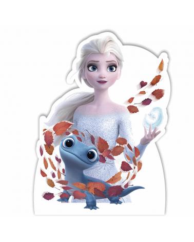 Display Frozen